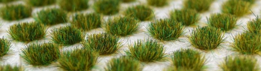 grasstufts